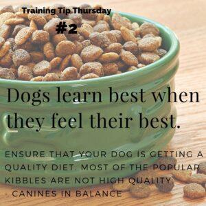 Training tip dog food